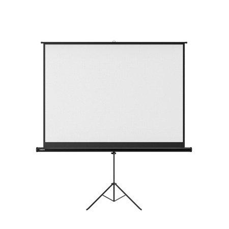"XGIMI 100"" Stand Screen"
